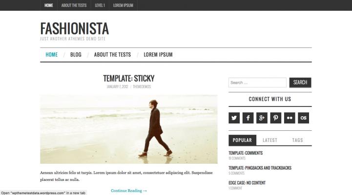 Fashionista Theme For WordPress Screenshot