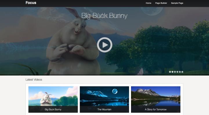 Focus WordPress Theme Screenshot