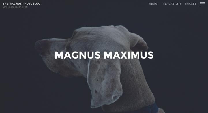 Magnus WordPress theme screenshot