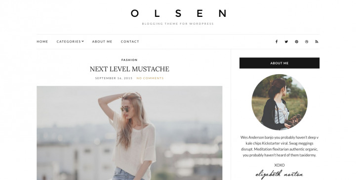 Olsen Light WordPress Theme